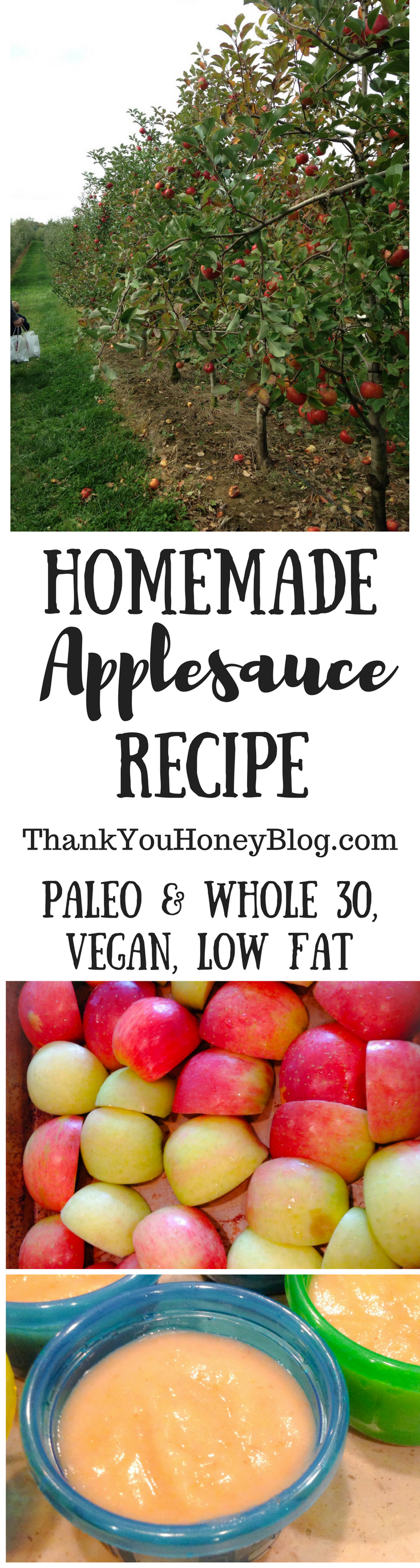 Homemade Applesauce Recipe