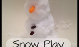 Snow Play Floridian Style
