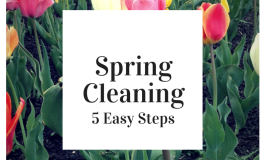 Spring Cleaning in 5 Easy Steps