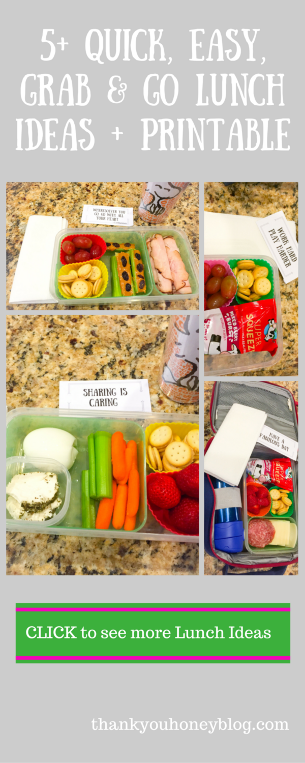 5+ Quick, Easy, Grab & Go Lunch Ideas + Printable #HorizonLunch #ad
