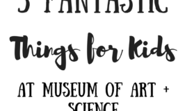 5 Fantastic Things for Kids Museum of Arts + Science
